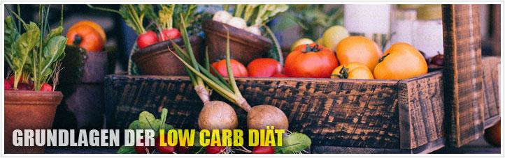grundlagen der low carb diät