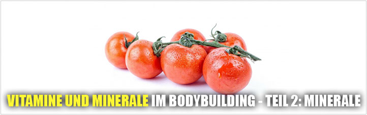 minerale-im-bodybuilding