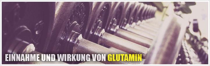 einnahme und wirkung von glutamin