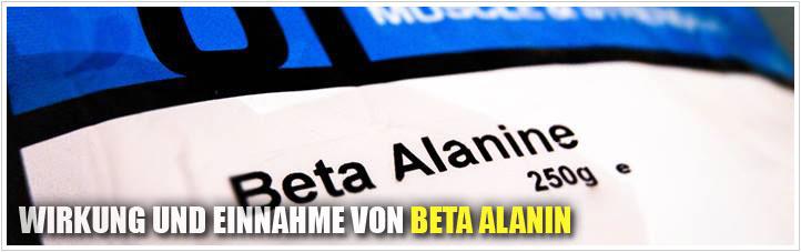 wirkung und einnahme von beta alanin